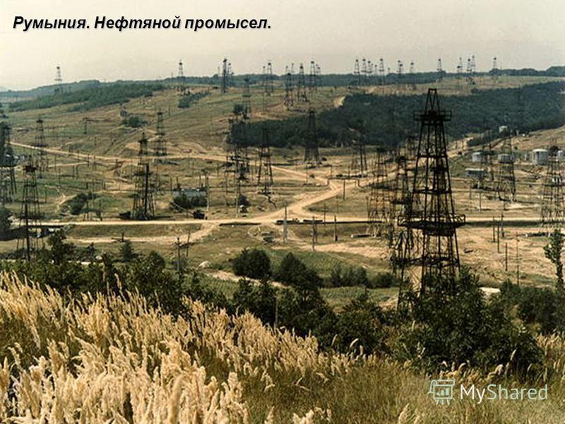 Румыния. Нефтяной промысел.