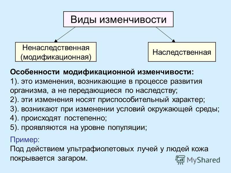 Виды изменчивости Ненаследственная (модификационная) Наследственная Особенности модификационной изменчивости: 1). это изменения, возникающие в процессе развития организма, а не передающиеся по наследству; 2). эти изменения носят приспособительный хар