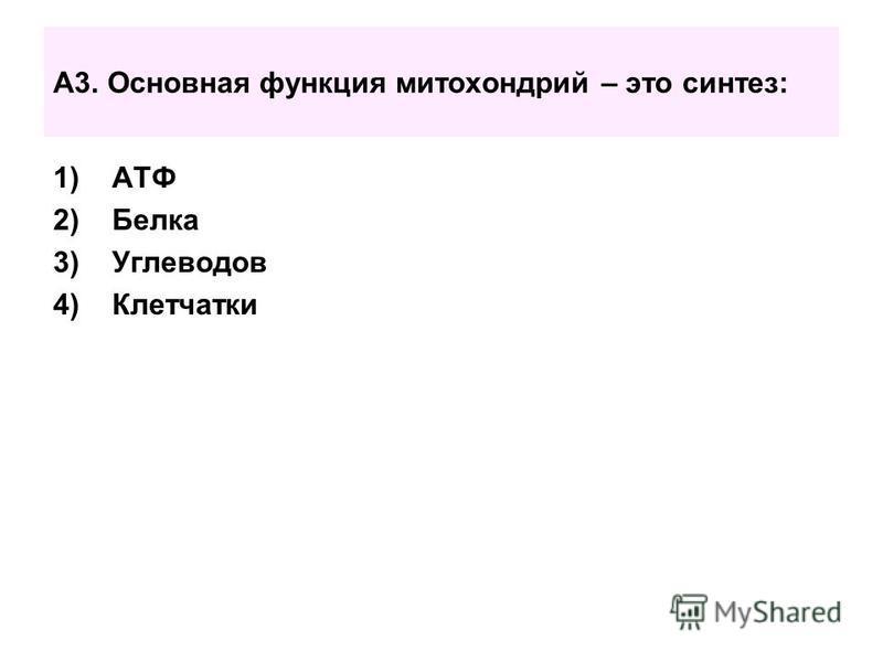 А3. Основная функция митохондрий – это синтез: 1)АТФ 2)Белка 3)Углеводов 4)Клетчатки
