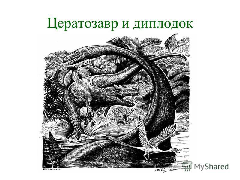 Цератозавр и диплодок