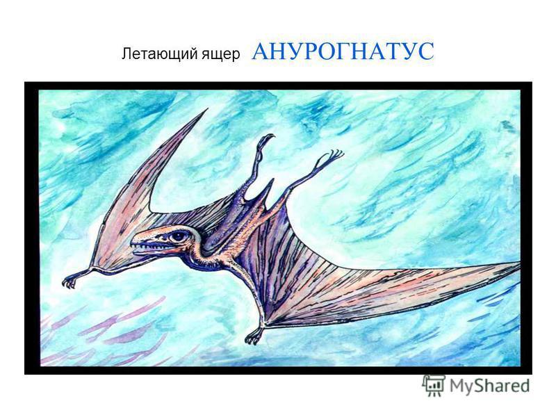 Летающий ящер АНУРОГНАТУС