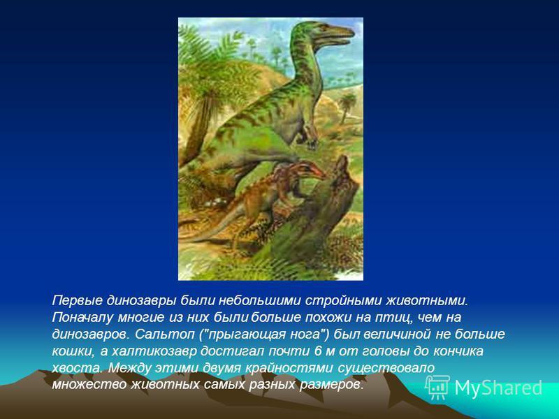 Первые динозавры были небольшими стройными животными. Поначалу многие из них были больше похожи на птиц, чем на динозавров. Сальтоп (