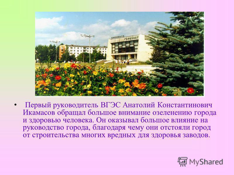 Первый руководитель ВГЭС Анатолий КонстантиновичИкамасов обращал большое внимание озеленению города и здоровью человека. Он оказывал большое влияние на руководство города, благодаря чему они отстояли город от строительства многих вредных для здоровья