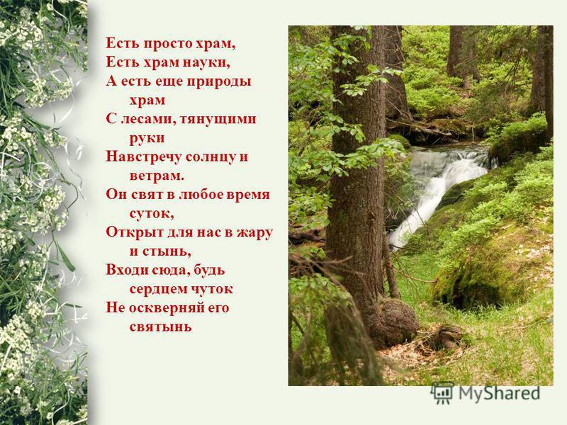 Есть просто храм, Есть храм науки, А есть еще природы храм С лесами, тянущими руки Навстречу солнцу и ветрам. Он свят в любое время суток, Открыт для нас в жару и стынь, Входи сюда, будь сердцем чуток Не оскверняй его святынь