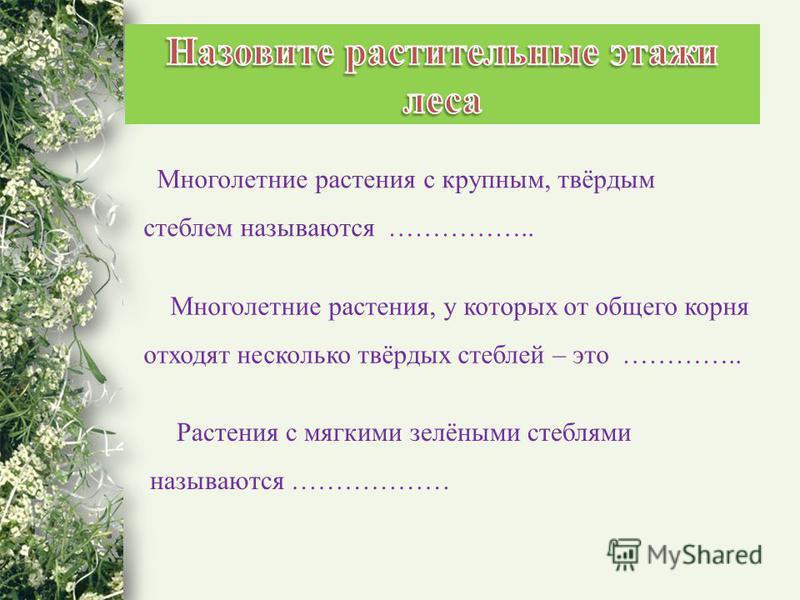 Многолетние растения с крупным, твёрдым стеблем называются …………….. Многолетние растения, у которых от общего корня отходят несколько твёрдых стеблей – это ………….. Растения с мягкими зелёными стеблями называются ………………
