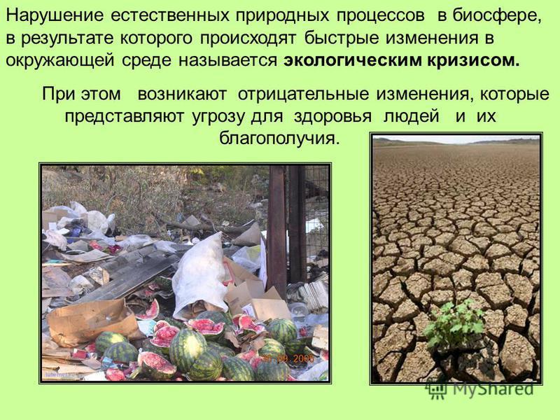Нарушение естественных природных процессов в биосфере, в результате которого происходят быстрые изменения в окружающей среде называется экологическим кризисом. При этом возникают отрицательные изменения, которые представляют угрозу для здоровья людей