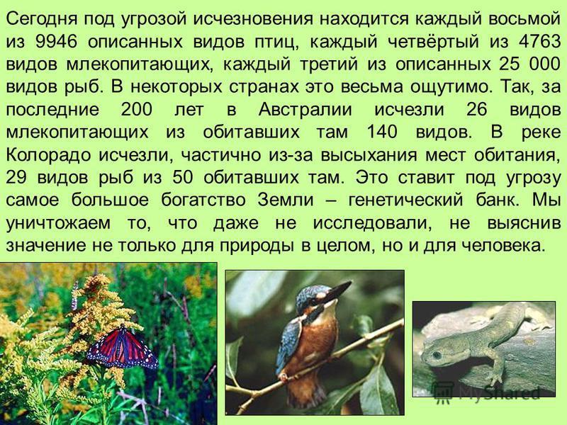 Сегодня под угрозой исчезновения находится каждый восьмой из 9946 описанных видов птиц, каждый четвёртый из 4763 видов млекопитающих, каждый третий из описанных 25 000 видов рыб. В некоторых странах это весьма ощутимо. Так, за последние 200 лет в Авс