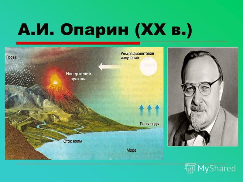 А.И. Опарин (ХХ в.)