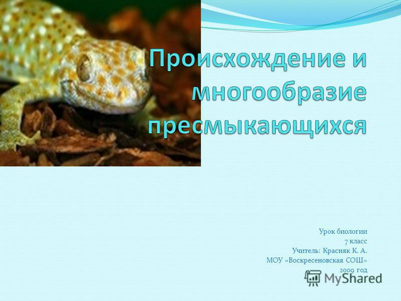 Урок биологии 7 класс Учитель: Красняк К. А. МОУ «Воскресеновская СОШ» 2009 год