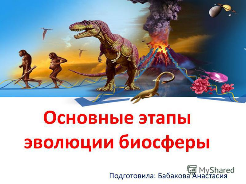 Основные этапы эволюции биосферы Подготовила: Бабакова Анастасия