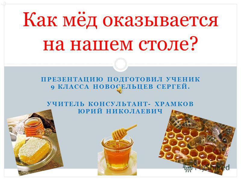 ПРЕЗЕНТАЦИЮ ПОДГОТОВИЛ УЧЕНИК 9 КЛАССА НОВОСЕЛЬЦЕВ СЕРГЕЙ. УЧИТЕЛЬ КОНСУЛЬТАНТ- ХРАМКОВ ЮРИЙ НИКОЛАЕВИЧ Как мёд оказывается на нашем столе?