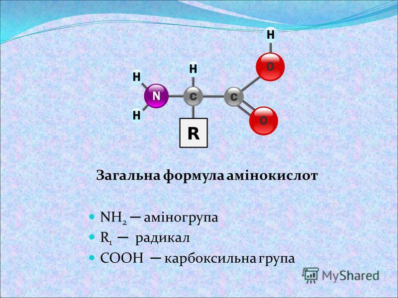 Загальна формула амінокислот NH 2 аміногрупа R 1 радикал COOH карбоксильна група