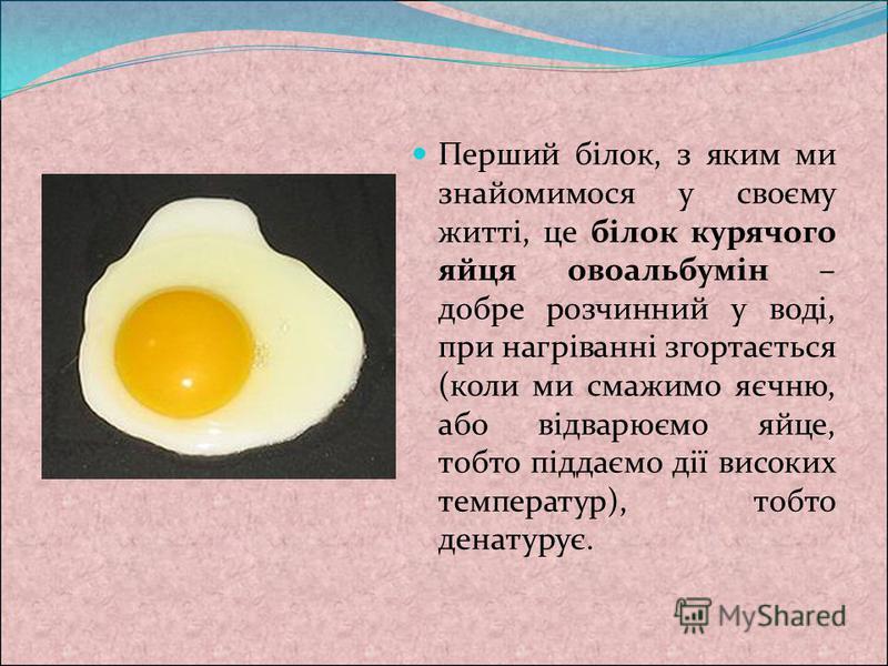 Перший білок, з яким ми знайомимося у своєму житті, це білок курячого яйця овоальбумін – добре розчинний у воді, при нагріванні згортається (коли ми смажимо яєчню, або відварюємо яйце, тобто піддаємо дії високих температур), тобто денатурує.
