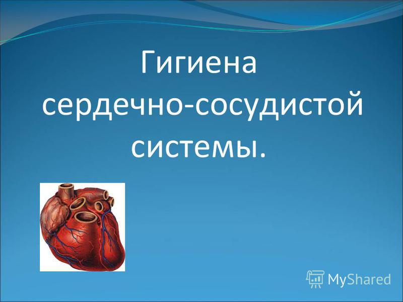 Гигиена сердечно-сосудистой системы.