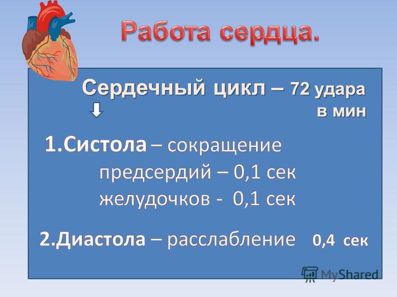 Систола желудочков – 0,3 сек