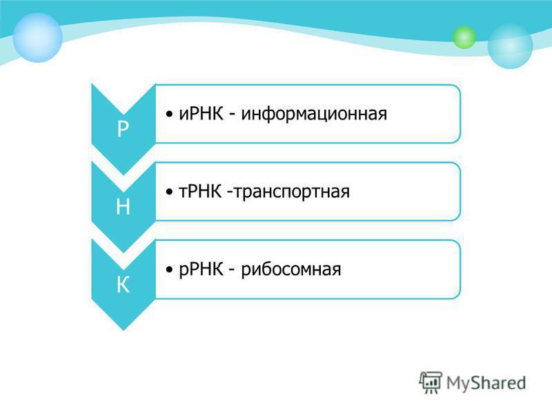 Р иРНК - информационная Н тРНК -транспортная К иРНК - рибосомная