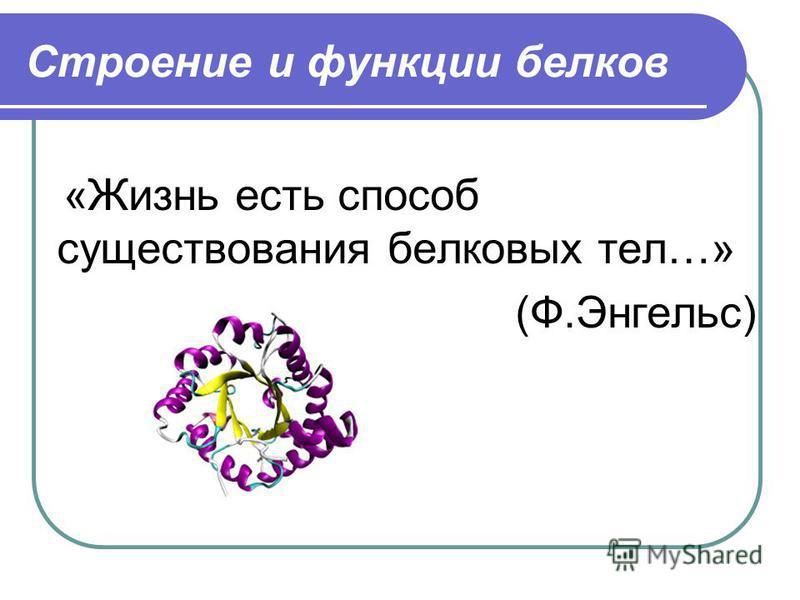 Строение и функции белков «Жизнь есть способ существования белковых тел…» (Ф.Энгельс)