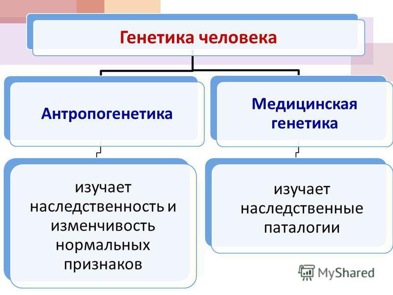 Генетика человека Антропогенетика изучает наследственность и изменчивость нормальных признаков Медицинская генетика изучает наследственные патологии