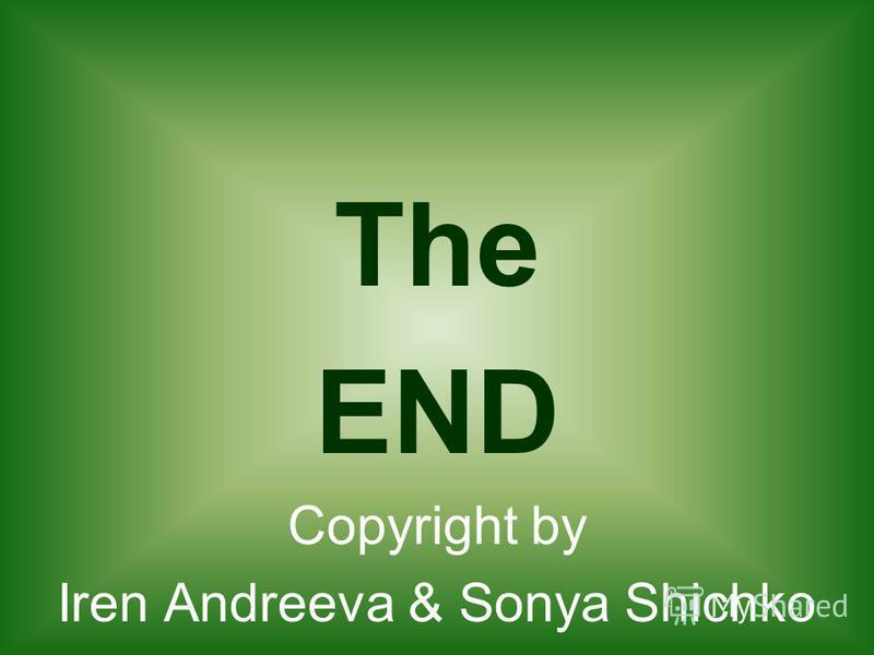 The END Copyright by Iren Andreeva & Sonya Shichko