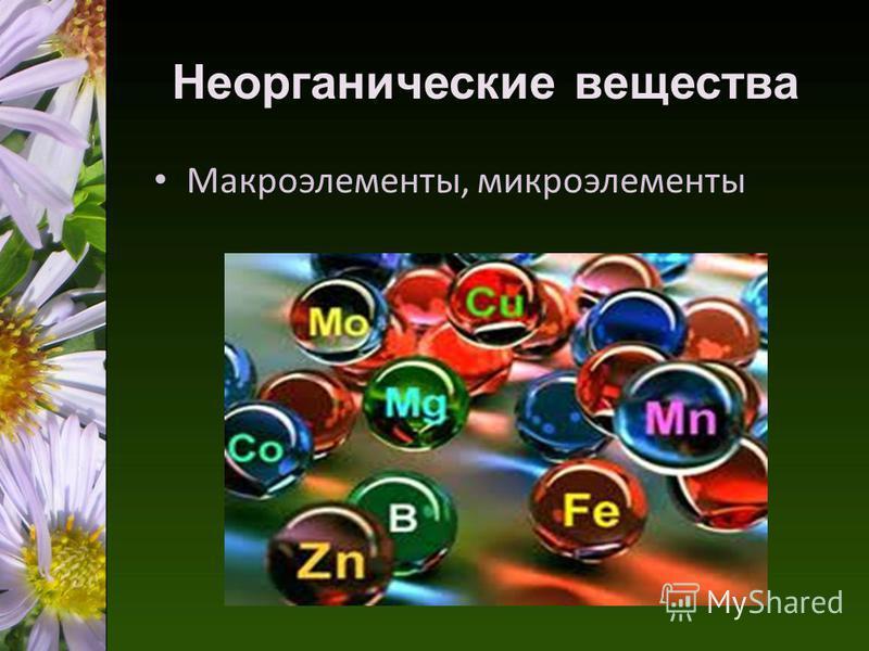 Неорганические вещества Макроэлементы, микроэлементы