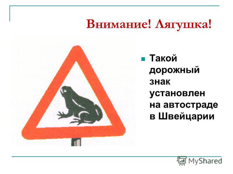 Внимание! Лягушка! Такой дорожный знак установлен на автостраде в Швейцарии
