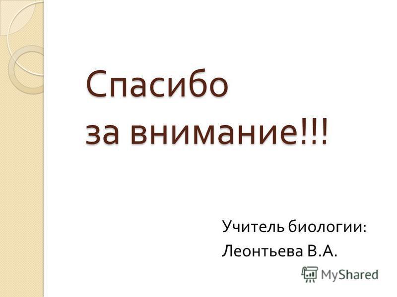 Спасибо за внимание !!! Учитель биологии : Леонтьева В. А.