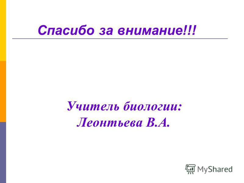 Учитель биологии: Леонтьева В.А. Спасибо за внимание!!!