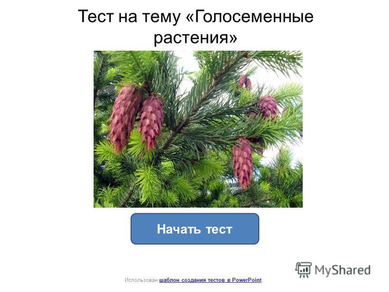 Тест на тему «Голосеменные растения» Начать тест Использован шаблон создания тестов в PowerPointшаблон создания тестов в PowerPoint