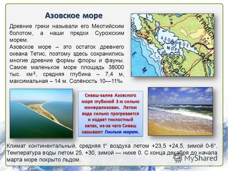 Азовское море Древние греки называли его Меотийским болотом, а наши предки Сурожским морем. Азовское море – это остаток древнего океана Тетис, поэтому здесь сохранились многие древние формы флоры и фауны. Самое маленькое море площадь 38000 тыс. км, с