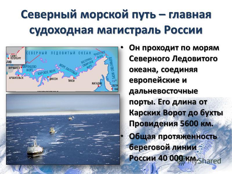 Северный морской путь – главная судоходная магистраль России Он проходит по морям Северного Ледовитого океана, соединяя европейские и дальневосточные порты. Его длина от Карских Ворот до бухты Провидения 5600 км. Он проходит по морям Северного Ледови