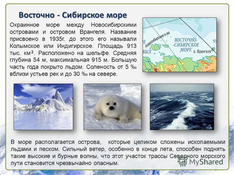 Восточно - Сибирское море Окраинное море между Новосибирскими островами и островом Врангеля. Название присвоено в 1935 г. до этого его называли Колымское или Индигирское. Площадь 913 тыс. км. Расположено на шельфе. Средняя глубина 54 м, максимальная