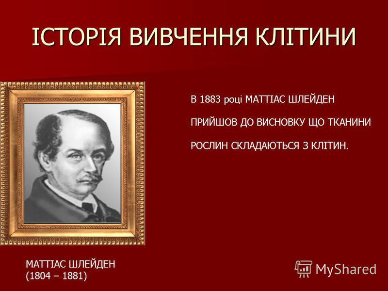 ІСТОРІЯ ВИВЧЕННЯ КЛІТИНИ МАТТІАС ШЛЕЙДЕН (1804 – 1881) В 1883 році МАТТІАС ШЛЕЙДЕН ПРИЙШОВ ДО ВИСНОВКУ ЩО ТКАНИНИ РОСЛИН СКЛАДАЮТЬСЯ З КЛІТИН.