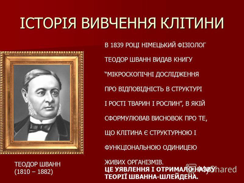 ІСТОРІЯ ВИВЧЕННЯ КЛІТИНИ ТЕОДОР ШВАНН (1810 – 1882) В 1839 РОЦІ НІМЕЦЬКИЙ ФІЗІОЛОГ ТЕОДОР ШВАНН ВИДАВ КНИГУ МІКРОСКОПІЧНІ ДОСЛІДЖЕННЯ ПРО ВІДПОВІДНІСТЬ В СТРУКТУРІ І РОСТІ ТВАРИН І РОСЛИН, В ЯКІЙ СФОРМУЛЮВАВ ВИСНОВОК ПРО ТЕ, ЩО КЛІТИНА Є СТРУКТУРНОЮ