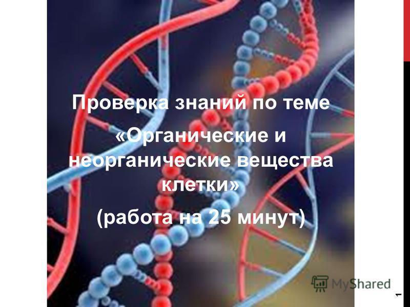 Проверка знаний по теме «Органические и неорганические вещества клетки» (работа на 25 минут) 1