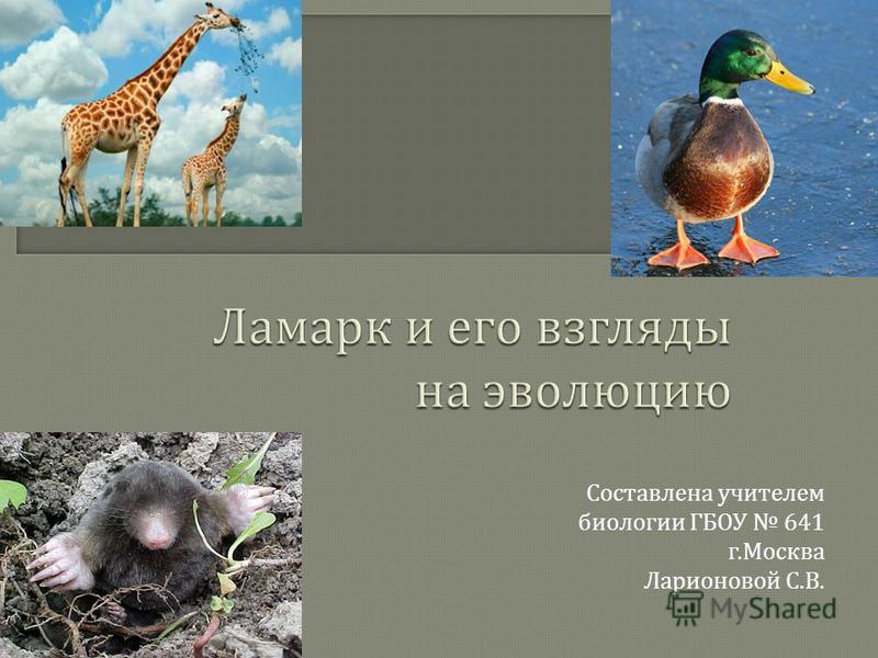 Составлена учителем биологии ГБОУ 641 г. Москва Ларионовой С. В.