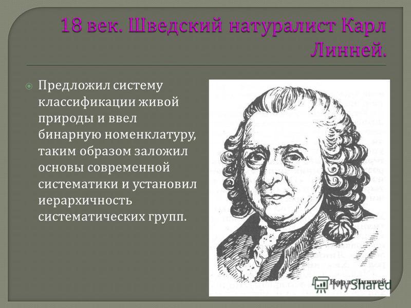 Предложил систему классификации живой природы и ввел бинарную номенклатуру, таким образом заложил основы современной систематики и установил иерархичность систематических групп.