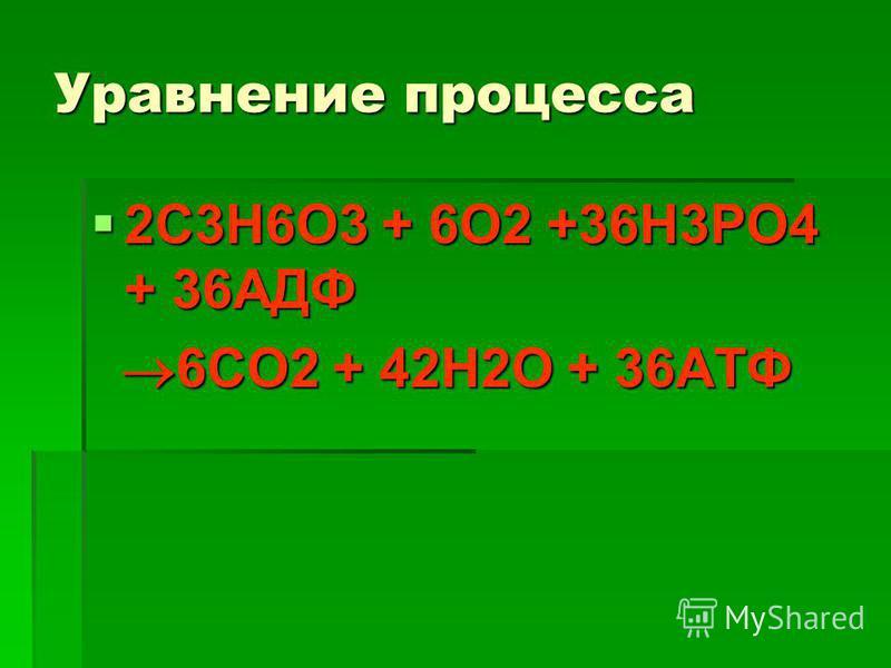 Уравнение процесса 2С3Н6О3 + 6О2 +36Н3РО4 + 36АДФ 2С3Н6О3 + 6О2 +36Н3РО4 + 36АДФ 6СО2 + 42Н2О + 36АТФ 6СО2 + 42Н2О + 36АТФ