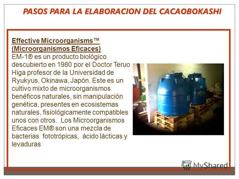 PASOS PARA LA ELABORACION DEL CACAOBOKASHI Effective Microorganisms (Microorganismos Eficaces) EM-1® es un producto biológico descubierto en 1980 por el Doctor Teruo Higa profesor de la Universidad de Ryukyus, Okinawa, Japón. Este es un cultivo mixto