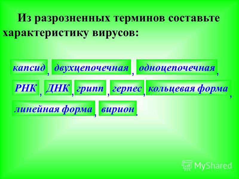 Из разрозненных терминов составьте характеристику вирусов: капсид, двухцепочечная, одноцепочечная, РНК, ДНК, грипп, герпес, кольцевая форма, линейная форма, вирион.