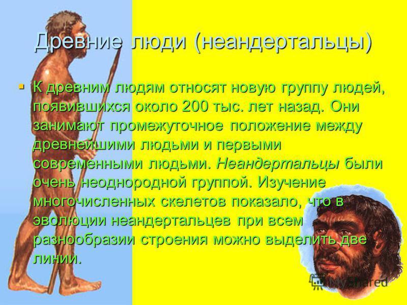 Древние люди (неандертальцы) К древним людям относят новую группу людей, появившихся около 200 тыс. лет назад. Они занимают промежуточное положение между древнейшими людьми и первыми современными людьми. Неандертальцы были очень неоднородной группой.
