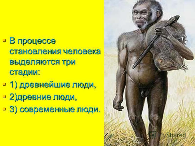 В процессе становления человека выделяются три стадии: В процессе становления человека выделяются три стадии: 1) древнейшие люди, 1) древнейшие люди, 2)древние люди, 2)древние люди, 3) современные люди. 3) современные люди.