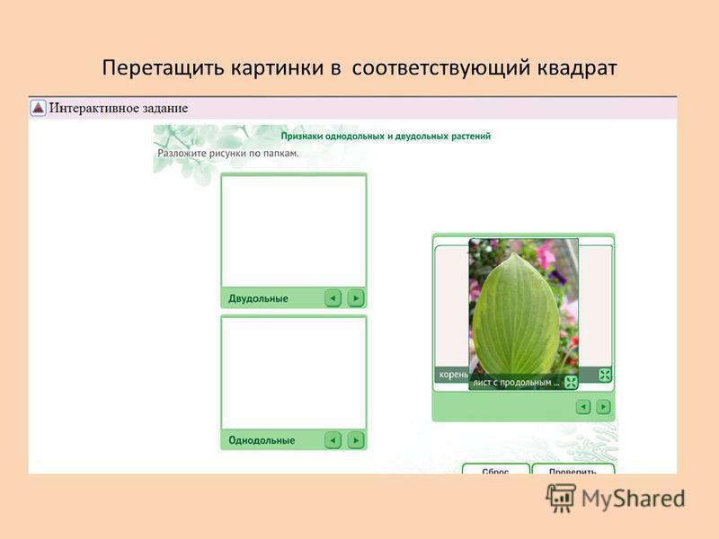 Перетащить картинки в соответствующий квадрат