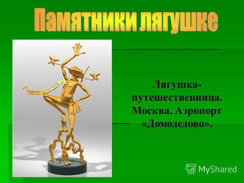Лягушка- путешественница. Москва. Аэропорт «Домодедово».