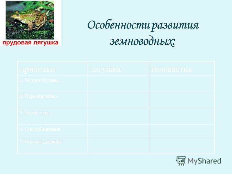 признаки лягушка головастик 1. Местообитание 2. Передвижение 3. Части тела 4. Способ питания 5. Органы дыхания