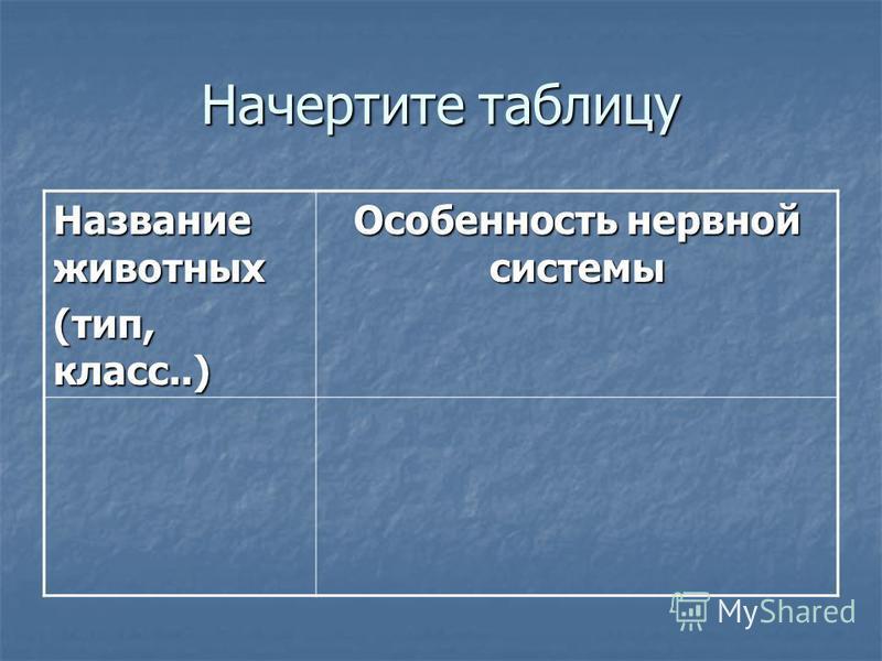 Начертите таблицу Название животных (тип, класс..) Особенность нервной системы