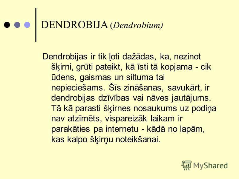DENDROBIJA (Dendrobium) Dendrobijas ir tik ļoti dažādas, ka, nezinot šķirni, grūti pateikt, kā īsti tā kopjama - cik ūdens, gaismas un siltuma tai nepieciešams. Šīs zināšanas, savukārt, ir dendrobijas dzīvības vai nāves jautājums. Tā kā parasti šķirn