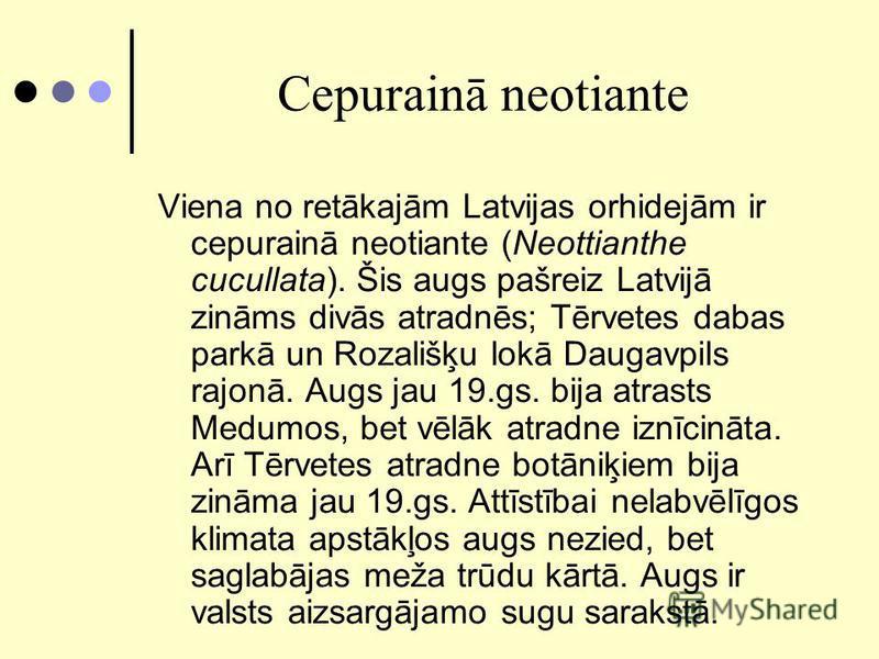 Cepurainā neotiante Viena no retākajām Latvijas orhidejām ir cepurainā neotiante (Neottianthe cucullata). Šis augs pašreiz Latvijā zināms divās atradnēs; Tērvetes dabas parkā un Rozališķu lokā Daugavpils rajonā. Augs jau 19.gs. bija atrasts Medumos,