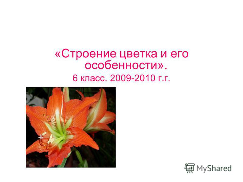 «Строение цветка и его особенности». 6 класс. 2009-2010 г.г.