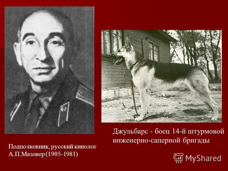 Подполковник, русский кинолог А.П.Мазовер (1905-1981) Джульбарс - боец 14-й штурмовой инженерно-саперной бригады