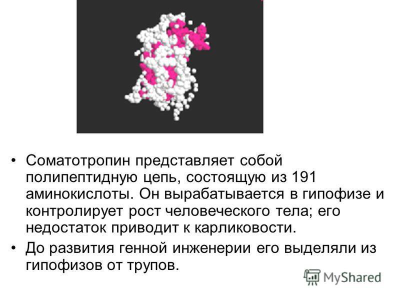 Соматотропин представляет собой полипептидную цепь, состоящую из 191 аминокислоты. Он вырабатывается в гипофизе и контролирует рост человеческого тела; его недостаток приводит к карликовости. До развития генной инженерии его выделяли из гипофизов от